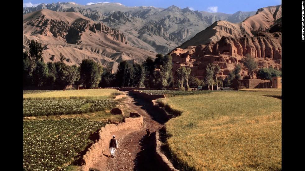 A farmer walks through fields, 2006.