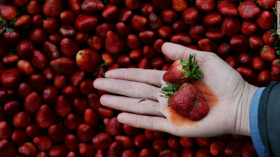 "Strawberries ranked No. 2 on the ""Dirty Dozen"" list. The Environmental Working Group report uses testing data from the USDA and the Food and Drug Administration."