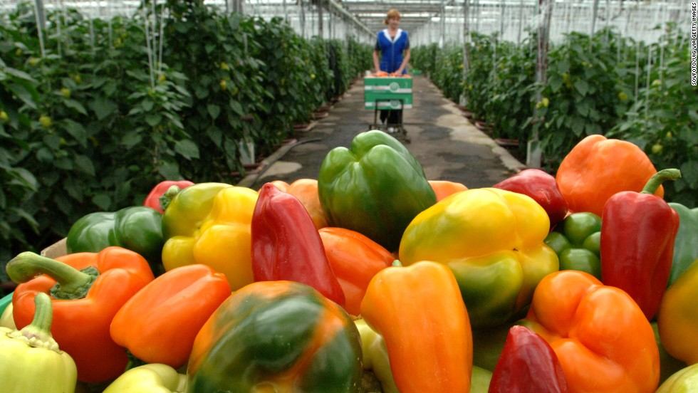 Sweet bell peppers remain in the No. 7 spot. In addition, the report notes that hot peppers are also frequently contaminated with insecticides toxic to human health, although they do not appear on the list (they ranked No. 12 in 2013).