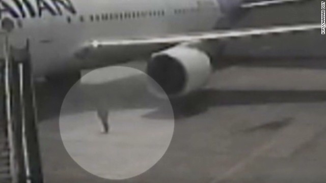 Watch stowaway exit wheel well of plane