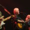 RESTRICTED 16 bands 0509
