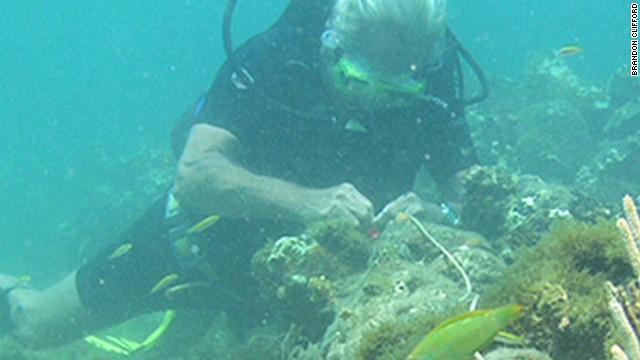 Sunken ship may be Columbus'