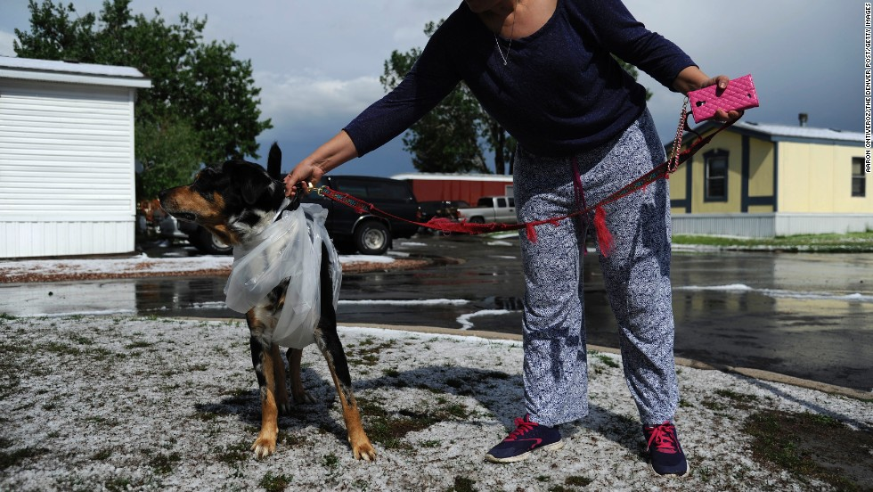 Gres Bajarno walks her dog, Trapito, after hail pounded Woodshire Mobile Park on May 21.