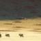 namibia fairy circles antelope