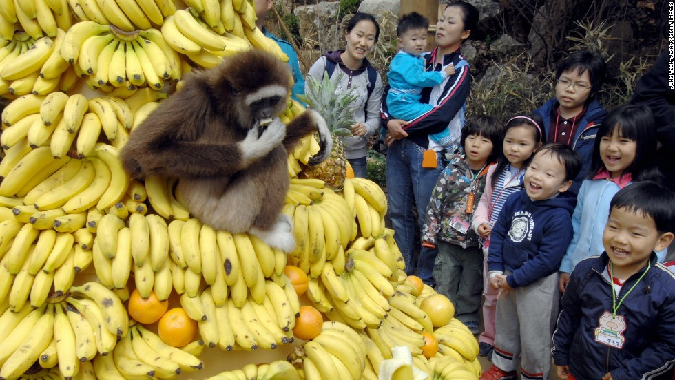 世界上25个最热门的游乐园 - wuwei1101 - 西花社