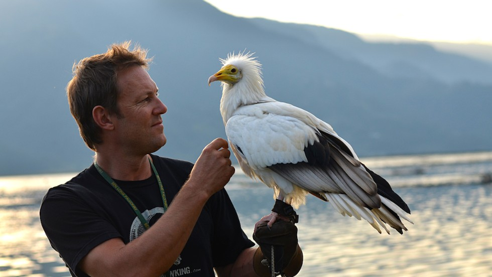 Scott Mason, founder of the Parahawking Project, uses two rescued Egyptian vultures, found and rehabilitated in Nepal, for his parahawking flights.