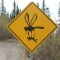 Grande Avenue mosquito