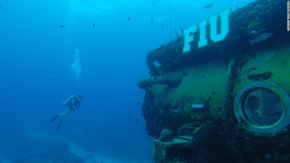 Aquarius, operated by Florida International University, calls itself the world's only underwater marine laboratory.