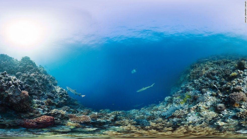 """The Catlin Seaview Survey used a 360-degree SVII-S panoramic camera to take these stunning underwater pictures of the Tubbataha Reefs National Park in the Philippines. The group is releasing them to mark """"Coral Triangle Day"""" on June 9."""