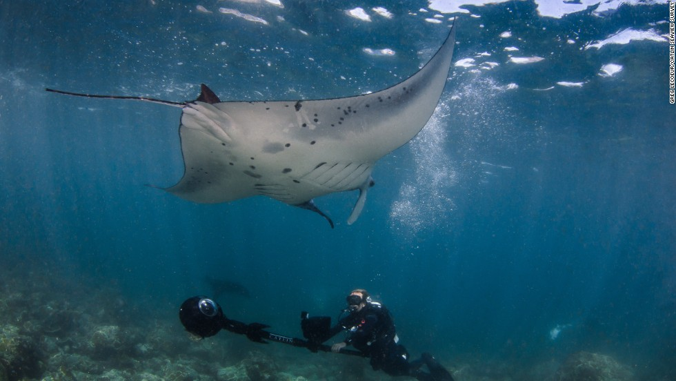 The panoramic photos from Tubbataha, the Philippines will be published on Google Street View Maps. The images are captured using the SVII 360-degree panoramic camera, every two seconds as it moves along the reef.