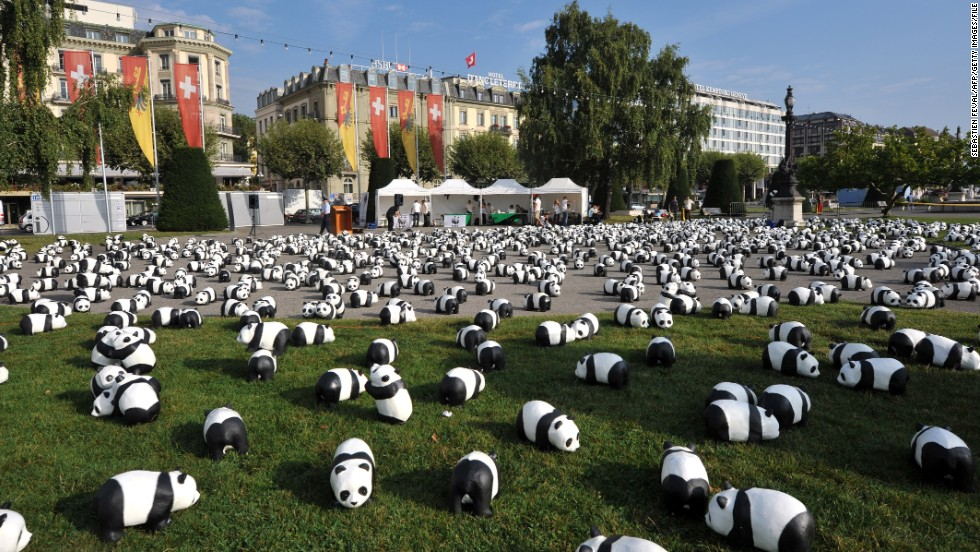 The pandas fill a square near Lake Geneva in September 2011 to celebrate the 50th anniversary of the World Wildlife Fund. A panda appears on the conservation organization's logo.