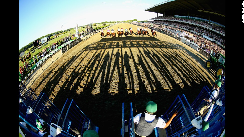 Horses sprint away from the starting gate in the Belmont Stakes, which took place Saturday, June 7, in Elmont, New York. Tonalist won the race, preventing California Chrome from winning the Triple Crown.