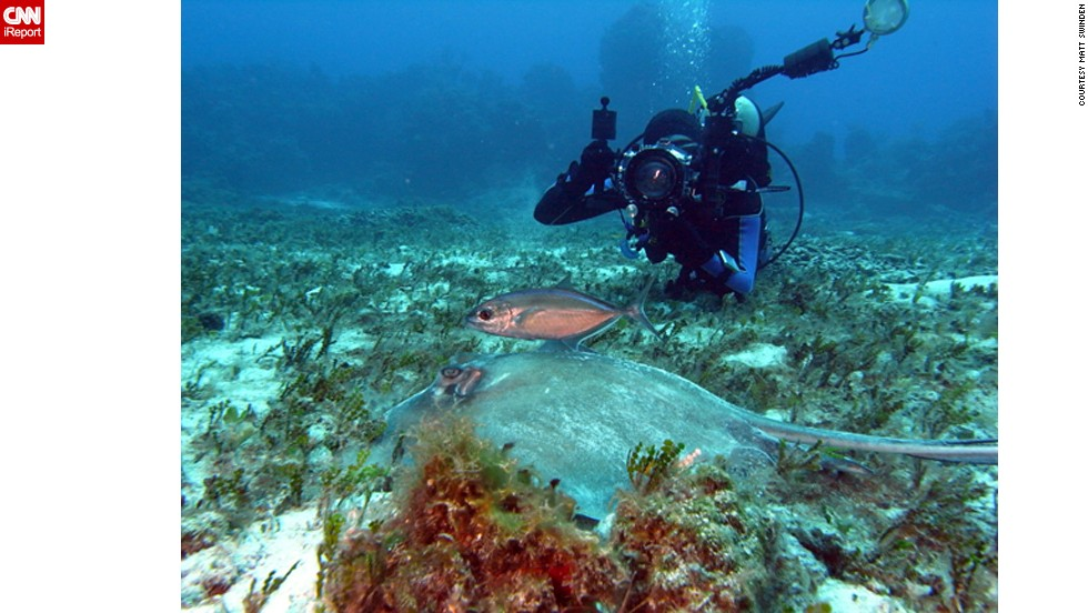 "Diver Adam Puche takes a photo of a <a href=""http://ireport.cnn.com/docs/DOC-759851"">southern stingray</a> with his diving mate in the background in Cozumel, Mexico."