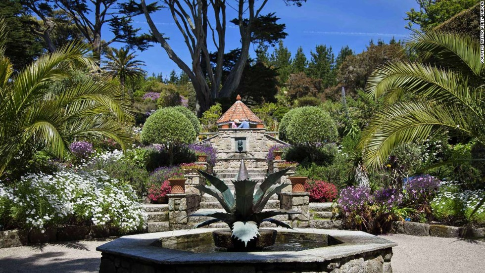 The UK's Abbey Garden features some of the finest outdoor specimens of subtropical flora found in the Northern Hemisphere, including great spiky agaves from the Mexican desert and King Proteas from South Africa.