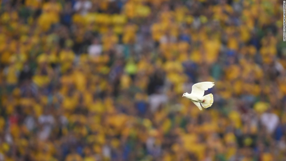 A dove flies through the stadium.