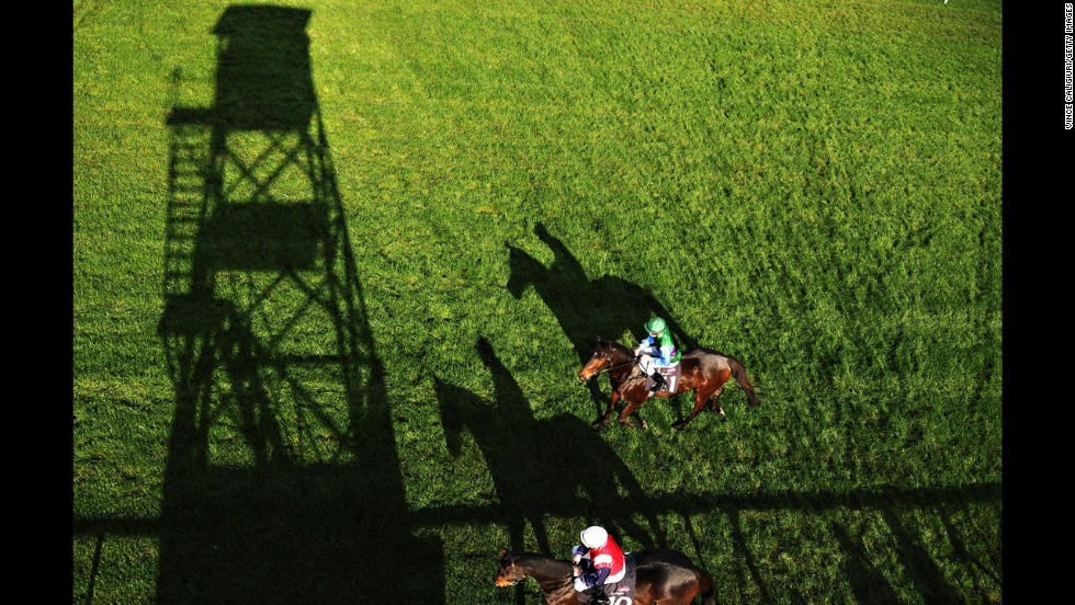 Horses go to the start of a race at Flemington Racecourse in Melbourne on Saturday, June 14.