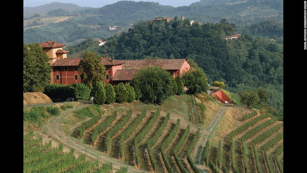 "The Italian vineyard landscape of Langhe-Roero and Monferrato is considered ""one of the most harmonious and most consistent with the ideal of a 'scenic' rural and vineyard landscape"" by the World Heritage Committee. The site includes five distinct wine-growing areas and a castle."