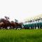 royal ascot race