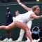 Wimbledon Czech