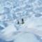 run around the world-Groenland Icecap 2012 080