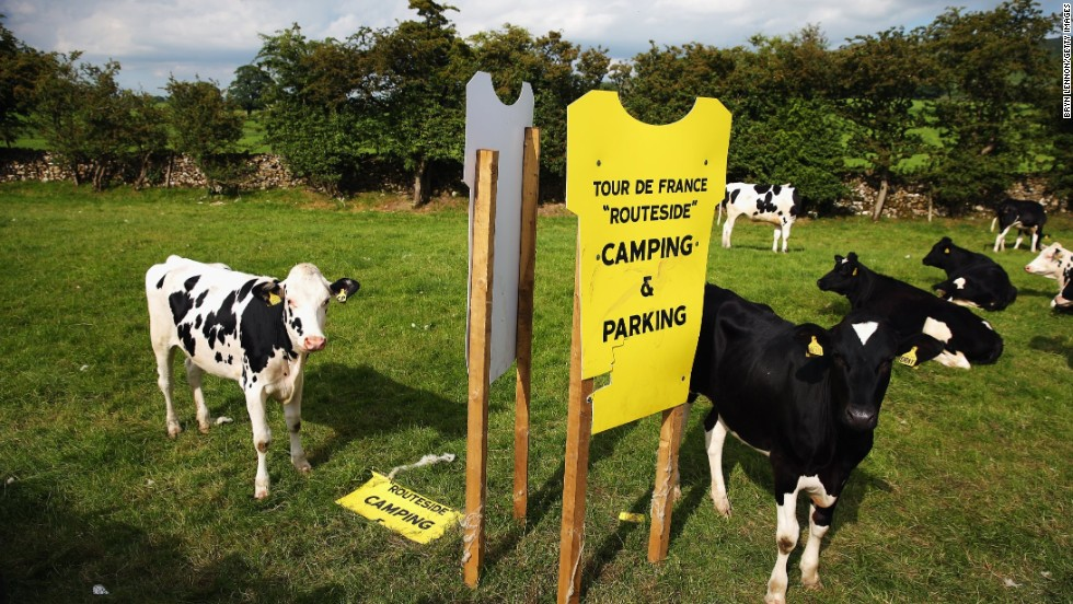 Signs referencing the Tour have been propping up all over Yorkshire, even on farms. The huge impact of the iconic event on the communities can be seen everywhere.