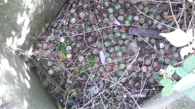 Hundreds of debris-covered tennis balls block a sewer intake