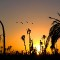 Marrakech photography sunset 2