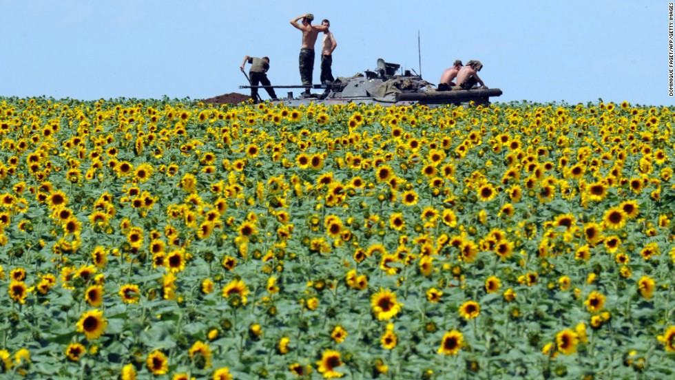 Ukrainian soldiers sit on an armored vehicle as they take up a position in a sunflower field near Donetsk, Ukraine, on Thursday, July 10. Here's a look at the upheaval that has persisted in eastern Ukraine since the election of President Petro Poroshenko.