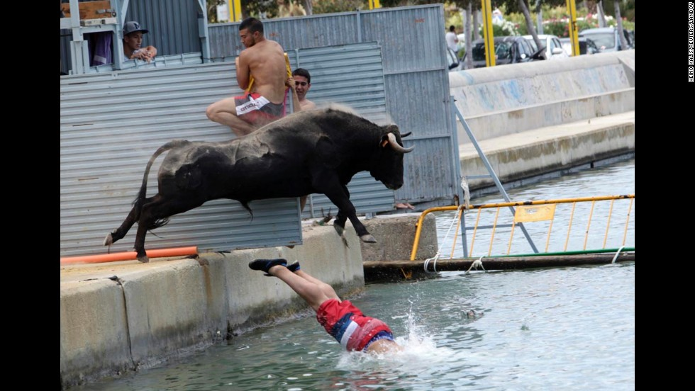 A bull chasing a reveler jumps into the sea Monday, July 7, during the Bous a la Mar (Bulls to the Sea) festival in Denia, Spain. During this festival, revelers provoke bulls to chase them until they both fall into sea. The bulls are then rescued and towed to safety by small boats.