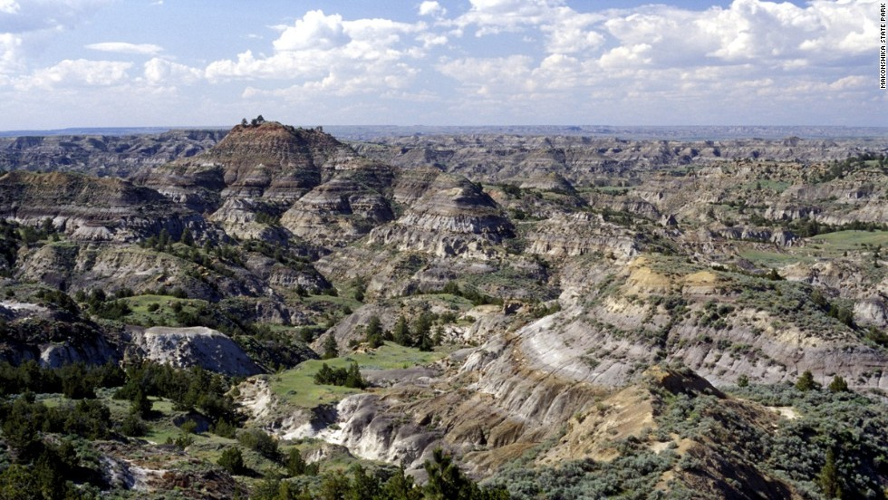 Discovered in 1902 by Barnum Brown, the Hell Creek fossil formation in Montana is expansive. The protected land spans four states and houses well-preserved dinosaurs including hadrosaurs, theropods and ceratopsians.