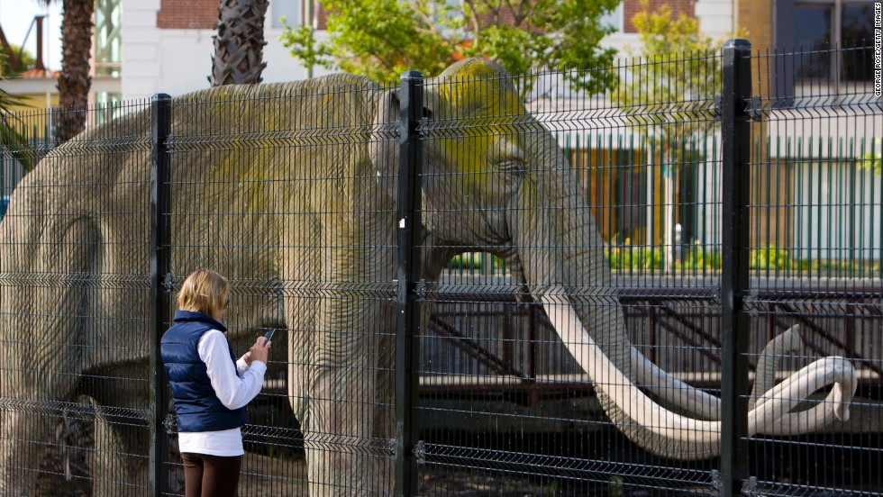 Millions visit the La Brea Tar Pits each year in Los Angeles, where fossil replicas and excavation classes give visitors a hands-on experience.
