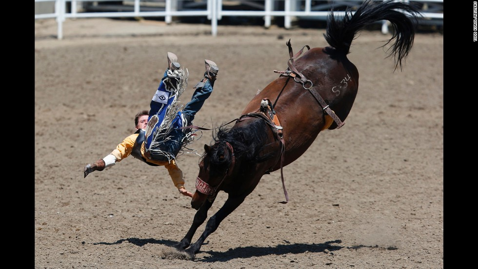 Wyatt Shaver flies off the horse Star Rocket in the Calgary Stampede's novice bareback event Saturday, July 12, in Calgary, Alberta.