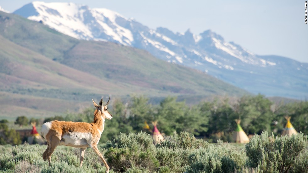 The ranch is adjacent to the Ruby Mountains and three hours north of Great Basin National Park.