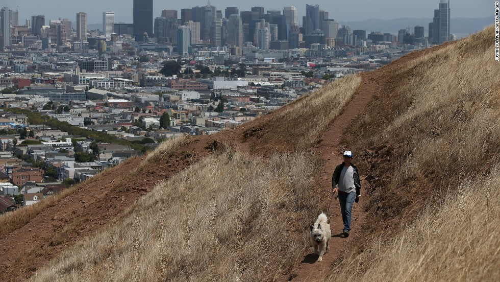 A woman walks her dog in San Francisco in July.