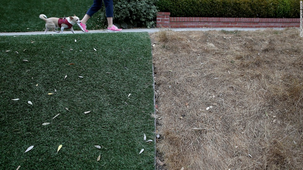 "An artificial lawn contrasts a dead lawn in San Francisco on Tuesday, July 15. Grappling with<a href=""http://www.cnn.com/2014/07/17/us/gallery/california-drought/index.html"" target=""_blank""> severe drought</a>, California officials on Tuesday approved statewide emergency water restrictions."