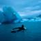 arctic surfing 1 paddling