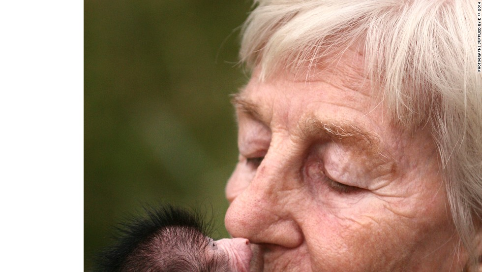 Meet Rita Miljo, a German woman who has dedicated her life to saving baboons, as introduced by director Adrian Cale.