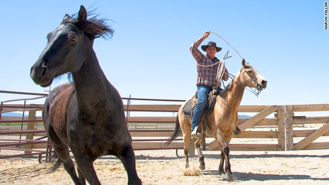 Cowboy experiences are available at the Mustang Monument ranch.