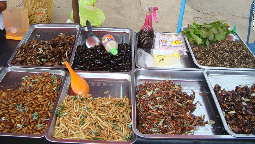 Aspire did ground research in Thailand -- one of the few countries with a strong insect farming tradition -- to learn about techniques to pass on to other countries.