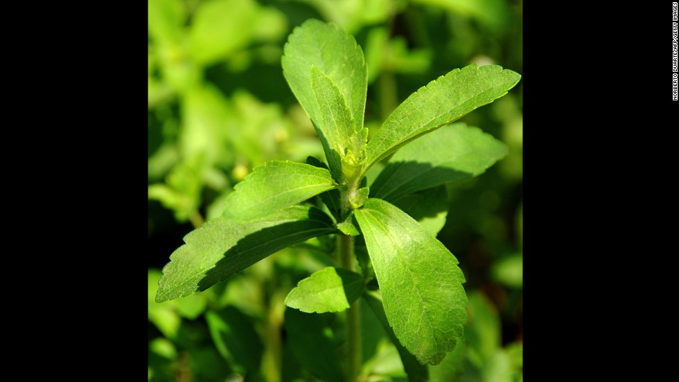 "The leaves from stevia plants are used for medicinal purposes and as a sugar-free sweetener. It is reported to be much sweeter than white sugar, but isn't approved by the <a href=""http://www.fda.gov/aboutfda/transparency/basics/ucm214864.htm"" target=""_blank"">FDA</a>. Nausea is a possible <a href=""http://www.mayoclinic.org/healthy-living/nutrition-and-healthy-eating/expert-answers/stevia/faq-20057856"" target=""_blank"">side effect</a>. Calories per tablespoon: 0."