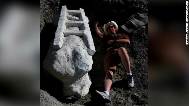 dnt dinosaur femur bone found_00002026.jpg