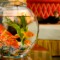 hotel amenities Goldfish