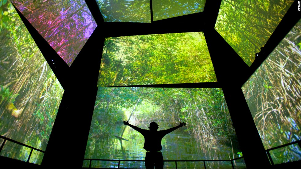 The highlight of the Biodiversity Museum is a 12-screen cinema that entirely surrounds you -- including one giant screen under foot. Monkeys scramble overhead, sharks swim underneath, visitors are lifted up and flown through a storm.