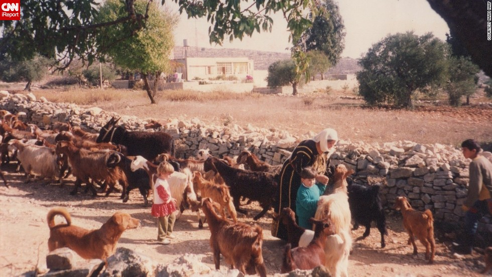Naif remembers his grandparents having tons of animals on their property in the West Bank.