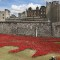 London Ceramic Poppy3