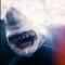 michael muller shark 1