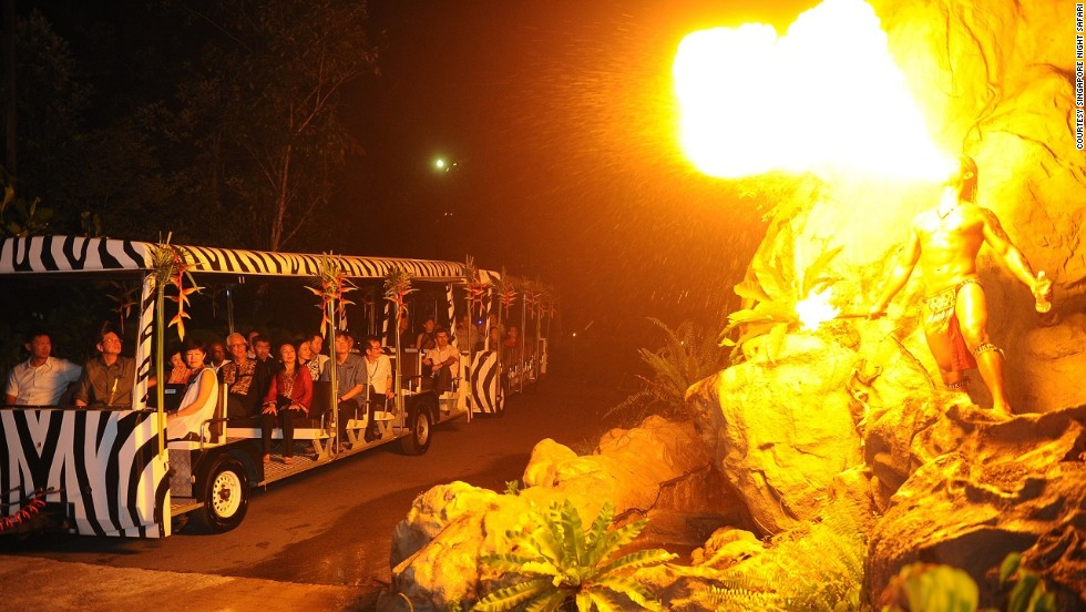 Singapore's Night Safari includes both a guided, open-air tram ride through the park's seven geographical zones as well as walking trails.
