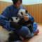 panda cubs 3
