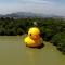 Duck man Hangzhou