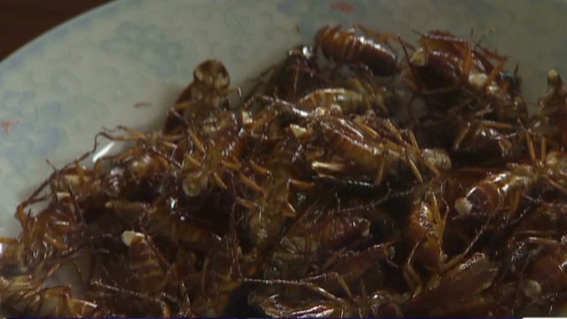 Cockroach farmer makes big bucks on bugs